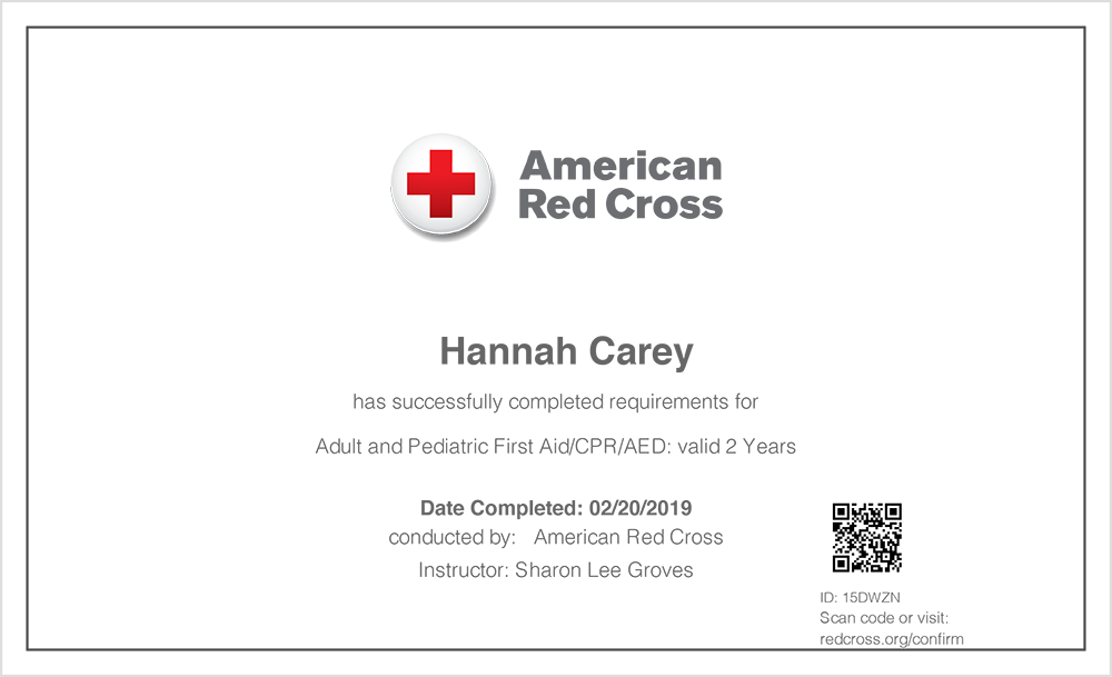 A Basic First Aid Certificate